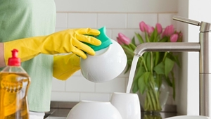 Bulaşık Deterjanları kategorisi için resim